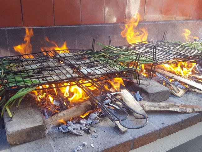 calcots-al-fuego-descubre-lhorta-img8